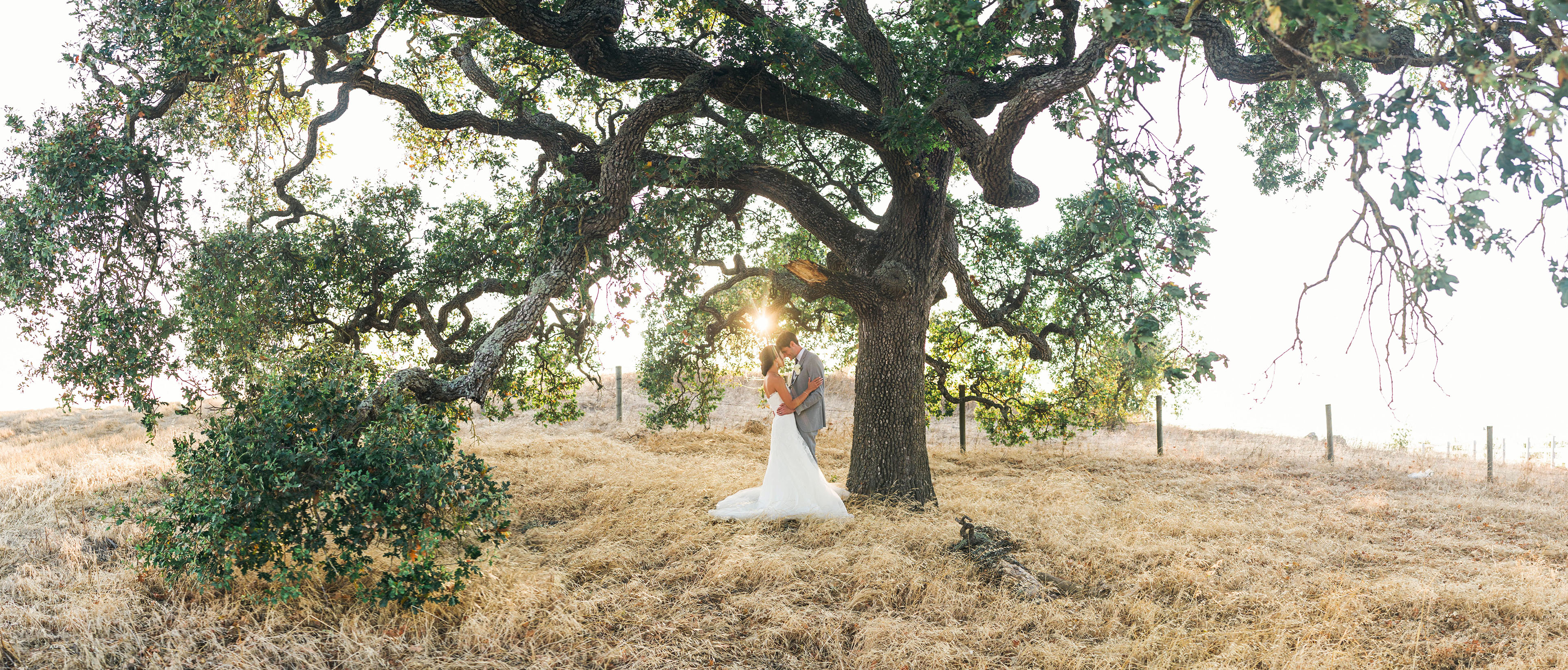 Connection Photography- Destination Wedding Photographer and